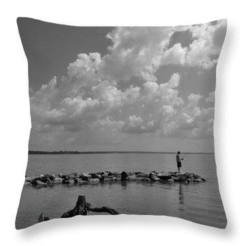 Throw Pillow featuring the photograph Jamestown Island by Steven Richman