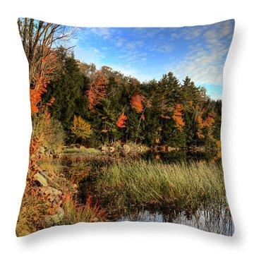 Jamies Pond 2 Throw Pillow