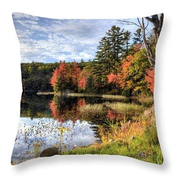 Jamie's Pond Throw Pillow
