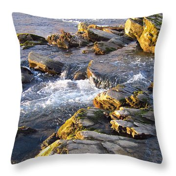 January Afternoon On The Watauga Throw Pillow