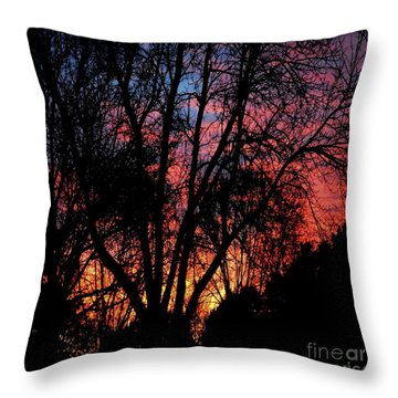 Throw Pillow featuring the photograph January Dawn by Luther Fine Art