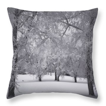 January In Paynton Throw Pillow