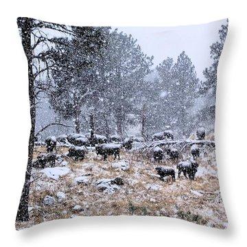 January Snow Throw Pillow