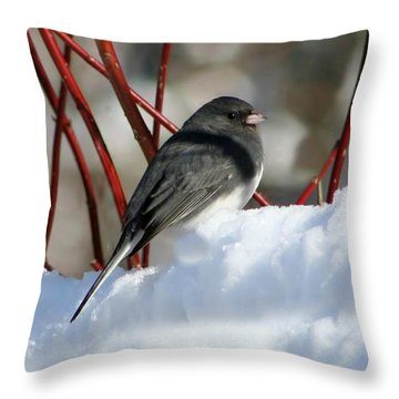 January Snow In New England Throw Pillow