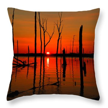 January Sunrise Throw Pillow by Raymond Salani III