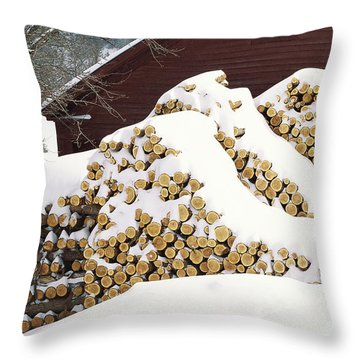 Throw Pillow featuring the photograph January Woodpile by Alan L Graham
