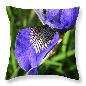 Elegance Throw Pillow by Cheryl Hoyle