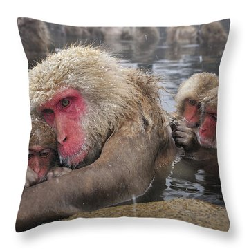 Throw Pillow featuring the photograph Japanese Macaque Grooming Mother by Thomas Marent