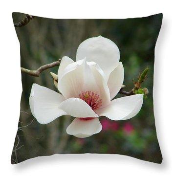 Japanese Magnolia Throw Pillow by Lew Davis