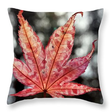Japanese Maple Leaf - 2 Throw Pillow by Kenny Glotfelty