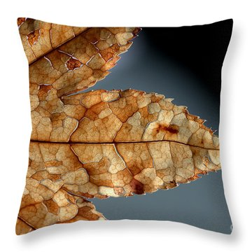 Japanese Maple Leaf Brown - 1 Throw Pillow