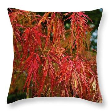 Japanese Maple Throw Pillow by Linda Bianic