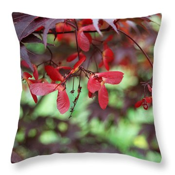 Throw Pillow featuring the photograph Japanese Maple Tree by Eva Kaufman