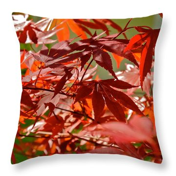 Japanese Red Leaf Maple Throw Pillow