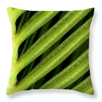 Hothouses Throw Pillows