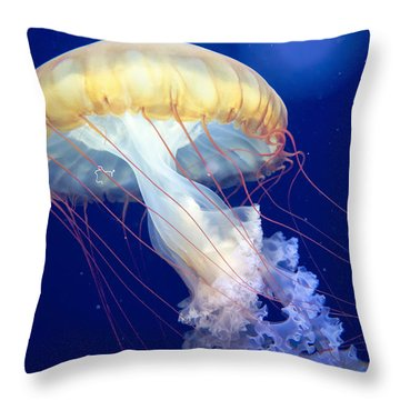 Japanese Sea Nettle Chrysaora Pacifica Throw Pillow