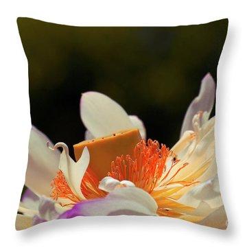 Japenese Jewel Throw Pillow by Aimelle