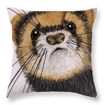 Throw Pillow featuring the drawing Jasper by Barbara Moignard