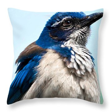 Jay Throw Pillow by Camille Lopez