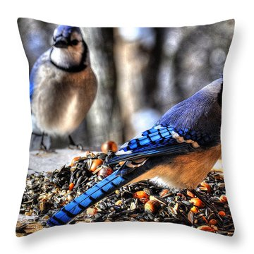 Jay Jay Throw Pillow