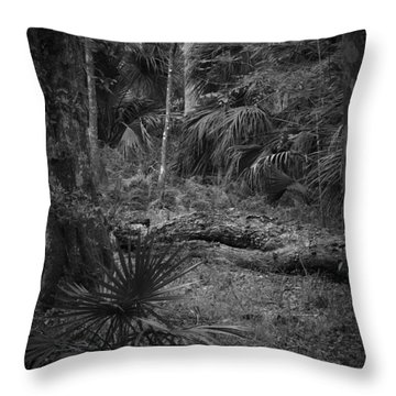 Jb Starkey Number 2 Throw Pillow by Phil Penne