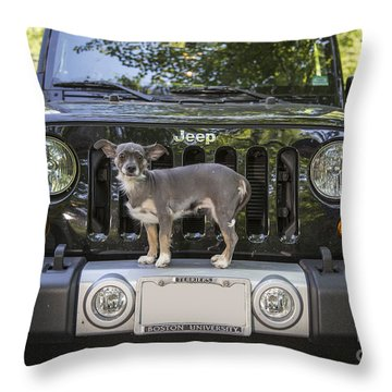 Jeep Dog Throw Pillow by Edward Fielding