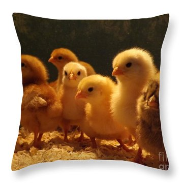 Jeepers Peepers Throw Pillow by Gerald Strine