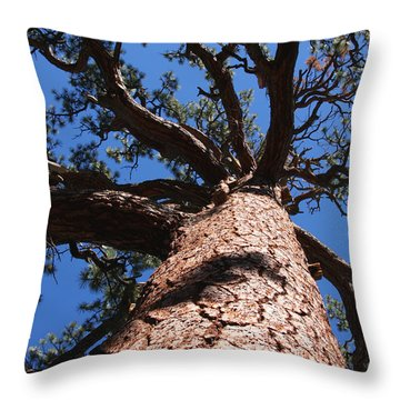 Jeffrey Pine Throw Pillow