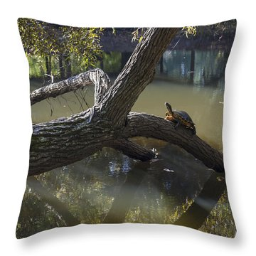Jeffries Creek Fallen Log With A Turtle Throw Pillow