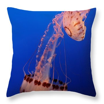 Jelly And Fishy Throw Pillow