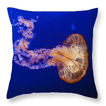 Jelly Fish 1 Throw Pillow