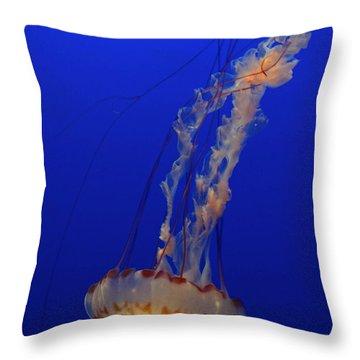 Jelly Throw Pillow by Jacklyn Duryea Fraizer