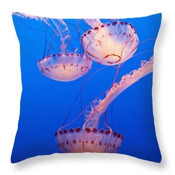 Jellyfish In Aquarium California, Usa Throw Pillow
