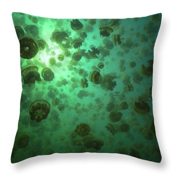 Throw Pillow featuring the photograph Jellyfish Swarm by Aaron Whittemore