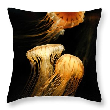 Jellyfish Trio Floating Against A Black Throw Pillow