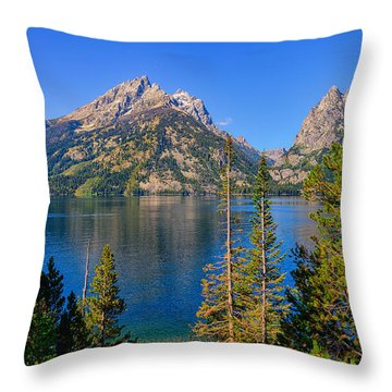 Jenny Lake Overlook Throw Pillow by Greg Norrell