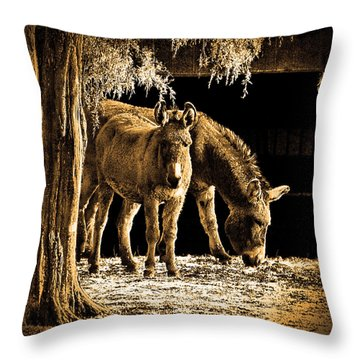 Jenny N Jack Throw Pillow by Robert Geary