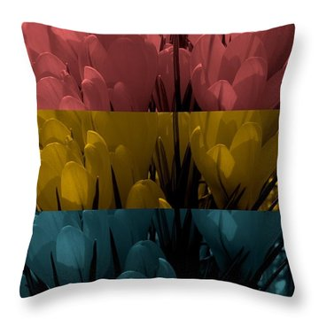 Jeremy Throw Pillow by Holley Jacobs