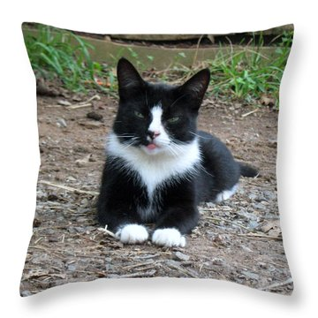 Jerry Throw Pillow