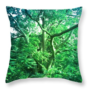 Throw Pillow featuring the photograph Jersey Tree by Denise Tomasura