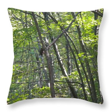 Throw Pillow featuring the photograph Jesus On The Cross by Diannah Lynch