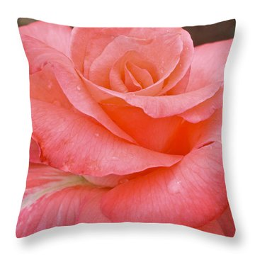 Jewel Throw Pillow by Julie Andel