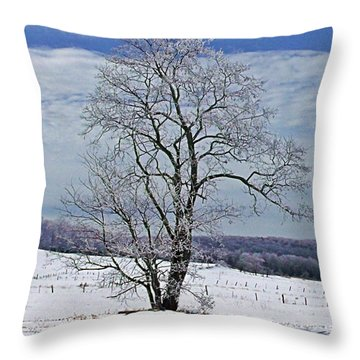 Throw Pillow featuring the photograph Jeweled Silhouette by Christian Mattison
