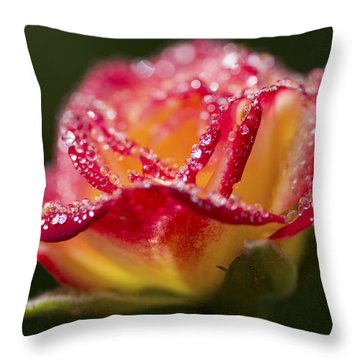 Throw Pillow featuring the photograph Jewels by Priya Ghose