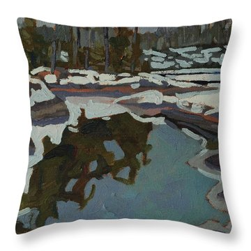 Jim Day Reflections Throw Pillow