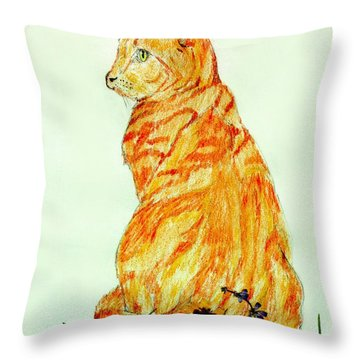 Throw Pillow featuring the drawing Jinj by Stephanie Grant