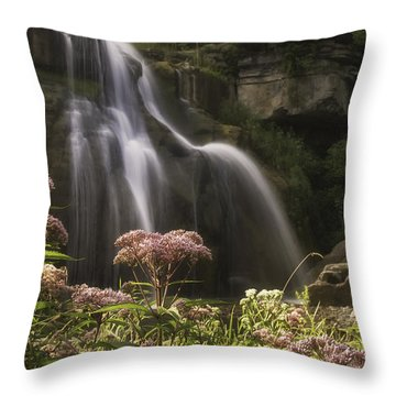 Joe Pye Weed For Pat Throw Pillow
