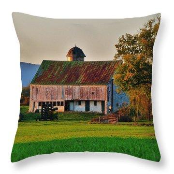 John Deere Green Throw Pillow by Robert Geary
