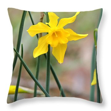 Throw Pillow featuring the photograph Johnny-jump-up by Kim Pate