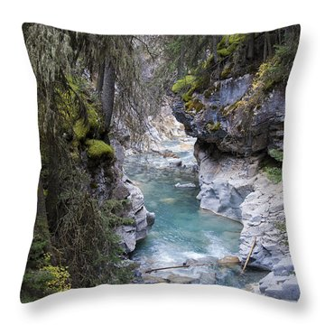 Johnsons Canyon Throw Pillow